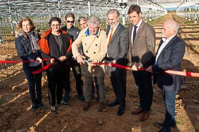 """Featured image for """"La première centrale vitivoltaïque française a été inaugurée"""""""