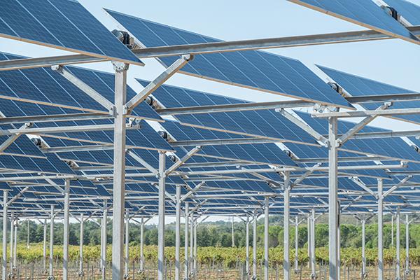 """Featured image for """"Florensac se lance dans l'agrivoltaïsme ou comment combiner agriculture et photovoltaïque"""""""