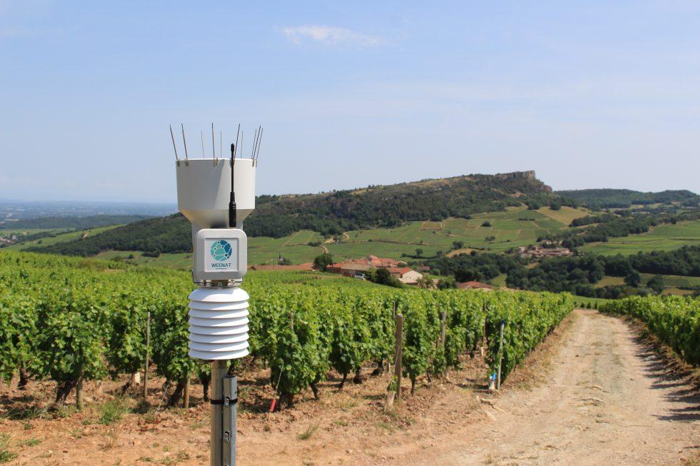 """Featured image for """"Météo agricole : la technologie ouvre le champ des possibles"""""""