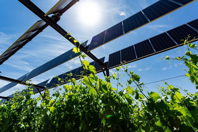 """Featured image for """"La Commission de régulation de l'énergie confirme la montée en régime de l'agrivoltaïsme et récompense 22 projets utilisant la technologie de Sun'Agri"""""""